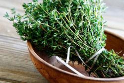 травы - самостоятельное избавление от клопов
